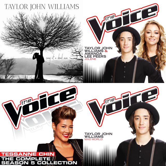 The Voice Artists on Spotify