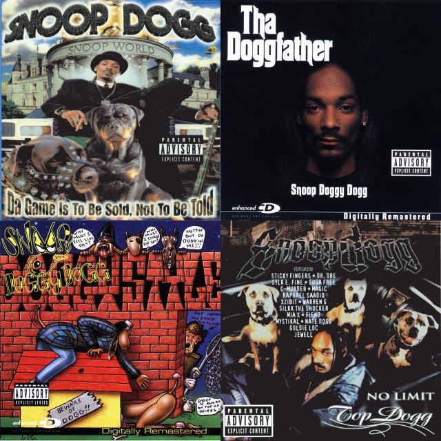 Snoop Dogg mix 1 on Spotify