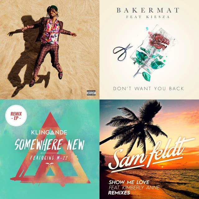 Show Me Love - EDX Remix / Radio Edit – Sam Feldt on Spotify