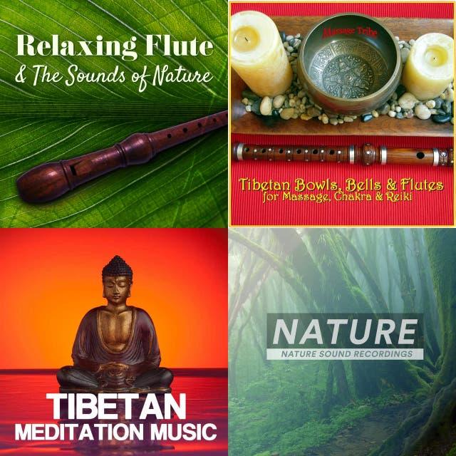 Tibetan Music playlist