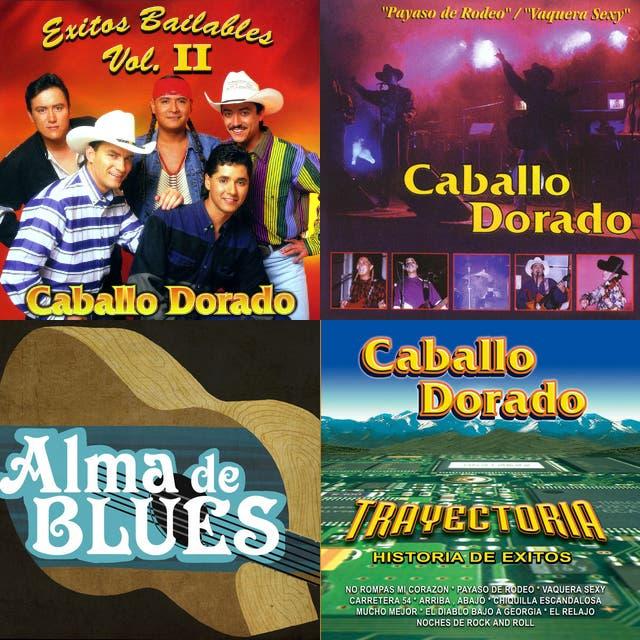 Caballo Dorado Payaso De Rodeo On Spotify