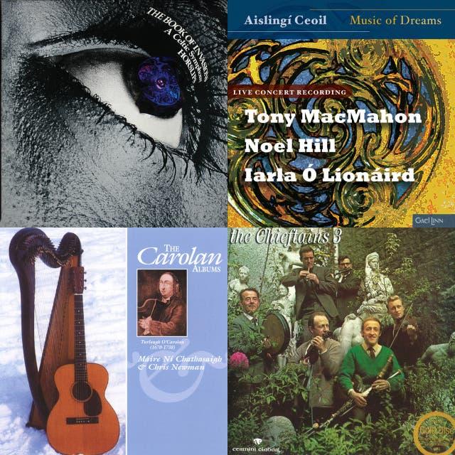 Steve Wickham's Essential Irish Tunes