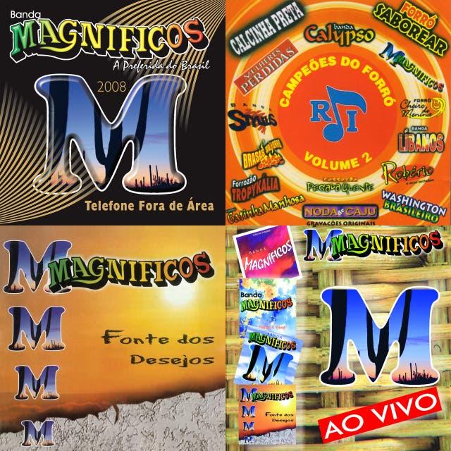 Imagem de Banda Magníficos